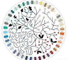 Tips to Avoid Confusion When Choosing a Proper Color for Your Home